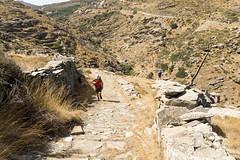 DSC06541a (I.H.Snaps) Tags: greece andros ormos korthiou