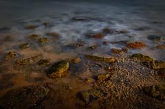 Strand (efgepe) Tags: 2016 cadzand holland niederlande oktober strand wasser meer sea water langzeitbelichtung steine felsen farbe color colour viveza lightroom nik
