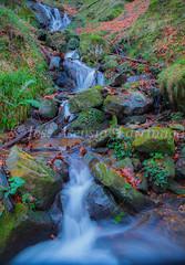Parque Natural de Gorbeia   #DePaseoConLarri #Flickr      -2781 (Jose Asensio Larrinaga (Larri) Larri1276) Tags: 2016 otoño parquenaturaldegorbeiagorbea efectoseda parquenaturaldegorbeia orozko bizkaia basquecountry euskalherria naturaleza