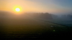 Misty morning (Jaanus Remm) Tags: mist fog foggy morning norway north sun yellow blue nature