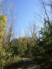 Waterworks Prairie Park Trail (projectblackweather) Tags: ia iowa waterworks prairie park trail