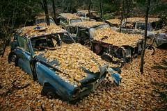 Autumn (ukasz Makiewicz) Tags: abandoned autumn auto car cemetery creepy forgotten scary lost urbex forest graveyard