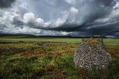 Viajando en el tiempo......... (T.I.T.A.) Tags: dueñas dueñas2016 chozodepastor chozo tormenta cielo nubes amapolas campodeamapolas palencia castillayleón