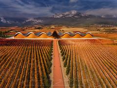 Ysios (sgsierra) Tags: ysios laguardia alava spain espaa viedo bodega wine mountain montaa color otoo
