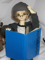 A Package in the Mail 007 (EmpathicMonkey) Tags: bjd bluefairy olive toby happy monkey photo story ball jointed dolls toys