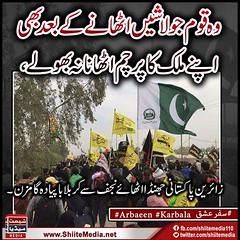 #Arbaeen #Karbala #Hussain #Walk (ShiiteMedia) Tags: muharam 1438 ashura shia shiite media killing genocide news urdu      channel q12