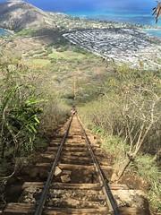 looking down the stairs (peakintheclouds) Tags: hike trail kokohead kokoheadcrater outside workout view freshair hawaii oahu