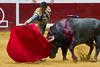DSC_9101.jpg (josi unanue) Tags: animal blood spain bull arena bullfighter sansebastian esp toro traje asta sangre espada bullring unanue guipuzcoa matador torero tauromaquia sufrimiento cuerno banderilla banderilero