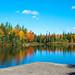 Autumn At The Irishtown Nature Park