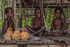 Children, Bien Village, Papua New Guinea (bfryxell) Tags: children coconut papuanewguinea oceania melanesia sepikriver bienvillage