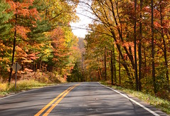 Technicolor drive (Sarah Hina) Tags: road autumnfoliage trees leaves highway autumncolors athensohio countrydrive ruraldrive