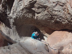 grand canyon2015 082