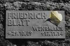 RIP (dominidomk) Tags: leaf memorial rip blatt