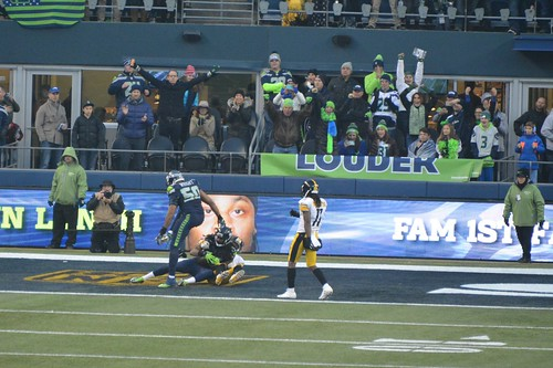 2015 Seahawks vs. Pittsburg Steelers game