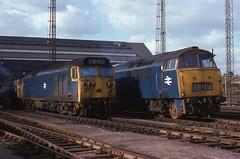 Old Oak Common c. 1974 - 75 (Malvern Firebrand) Tags: old oak common class 50 western class52 diesel hydraulic english electric swindon ee mpd shed locos blueera 1970s railway railroad blue era london england britain uk