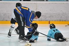 Schnuppertag Kids on ice 19-12-2015 (68)