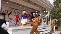 Super-Duper Jumpin' Time (haphopper) Tags: show kids movie monkey stage character mickey donald entertainment minnie stageshow tokyodisneyland tdl 2014 disneycharacters tdr tokyodisneyresort superduperjumpintime ドナルド ドナルドダック ミッキー ミッキーマウス ミニー ミニーマウス