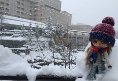Winter holiday at Sapporo