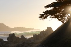 Halo (GeminEye27) Tags: sunset mist seascape cypress pointlobos carmelriverstatebeach