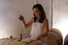 IMGP8543 (Lucifer's Gaze) Tags: pentax k5  spain summer   winery  vinyard  cellar  rioja docarioja  sierradetolono