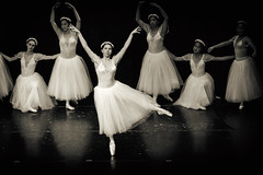 Like a Ballerina (Thomas Hawk) Tags: america california eastbay holynames holynamesuniversity oakland usa unitedstates unitedstatesofamerica ballet fav10 fav25 fav50