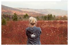 Open Spaces (Geoff Sills) Tags: looking distance mountain range autumn fall open landscape portrait cranberry glades monongahela national forest west virginia geoffrey william sills geoff nikon 700 85mm 14
