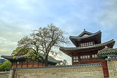Deoksugung Palace (Johnnie Shene Photography(Thanks, 1Million+ Views)) Tags: deoksugungpalace palace deoksugung seokeojeon junghwajeon sideview lowangle oldstyle oldfashioned eaves rooftop cloudy korea korean photography horizontal outdoor colourimage fragility freshness nopeople selectivefocus tranquility interesting awe wonder tree imperialpalace royalpalace joseon chosun ancient kojong gojong sunjong greathan travel destination attraction landmark local seoul trip tourism asia asian canon eos600d rebelt3i kissx5 sigma 1770mm f284 dc macro lens