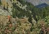 Bourg St-Pierre (bulbocode909) Tags: valais suisse bourgstpierre valdentremont montagnes nature chalets forêts arbres paysages vert rouge