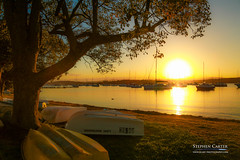 IMG_0556-2 (Scart Photography) Tags: valentine lakemacquarie