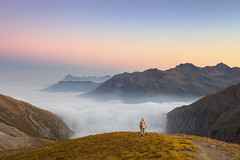A Walk on the Clouds (a galaxy far, far away...) Tags: colledellagnello mountain mountains hiking cloudscape seaofclouds clouds evening nuances alpi alpine alpen alpes naturallight nature pink sky canon robertobertero atmosphere mood moody landscape infinite valvaraita valley delicate