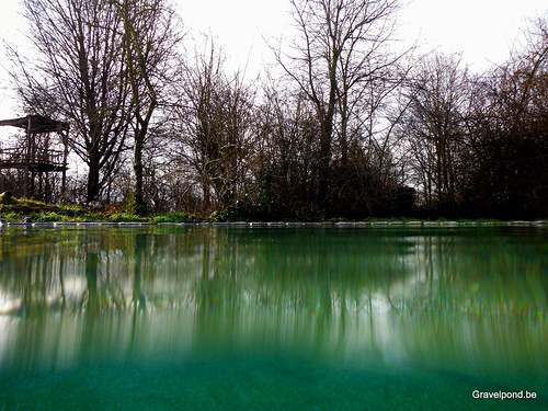 natural swimming pool in Winter