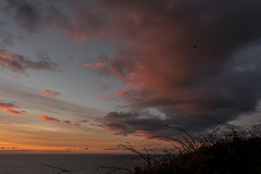 That Sky Again (-j-o-s-e-) Tags: vivid sun set clouds sky amazing warm glowing sea seascape coast coastal coastline triskelion way bramble silhouettes bird silhouette