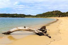 Anchorage Bay (Andrés Guerrero) Tags: abeltasman abeltasmannationalpark newzealand nuevazelanda parquenacionaldeabeltasman anchoragebay playa beach sea mar arena sand