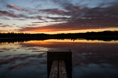 the unUsual (stefan.bayer) Tags: unusual flickrfriday water wood sunset deutschland germany see sea wasser sb light