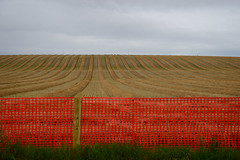Parallel (Grandpaparazzi) Tags: field cut rows parallel fence orange sky cloudy poucecoupe bc