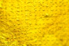 Macro Test Shot (Chris Huddleston) Tags: surface abstract yellow dots noperson macro texture