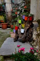Valloria (099) (Pier Romano) Tags: valloria porte porta dipinta dipinte door doors painted imperia liguria italia italy nikon d5100 paese town dolcedo artisti pittori