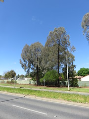 Golden Grove Rd, Wynn Vale/Redwood Park (RS 1990) Tags: goldengroverd wynnvale redwoodpark teatreegully adelaide southaustralia thursday 27th october 2016