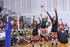 IMG_6897 (SJH Foto) Tags: girls volleyball high school allentown central catholic somerset team teen teenager net battle spike block action shot jump midair burst mode