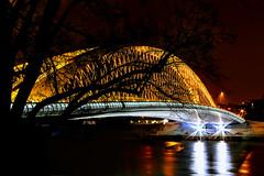 Troja Bridge - Prague (milan.humaj) Tags: night prague holeovice vltava river bridge europe centraleurope light tree silhouette dark reflection praha evropa czech republic bohemia city town traffic