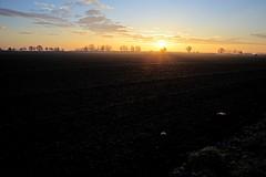 Lever  de soleil sur la plaine (mifranc91) Tags: d700 sunset leverdesoleil hiver