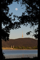 Framed supermoon (e-maujean) Tags: morning clairobscur nikon visitcanberra telstratower cbr australia trees supermoon moon canberra frame sunrise d750