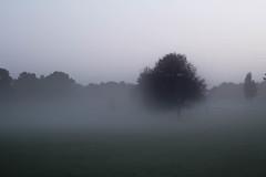 IMG_3001.jpg (Mr Green Light) Tags: smithpool parks2016 unitedkindom andycash fenton siloete