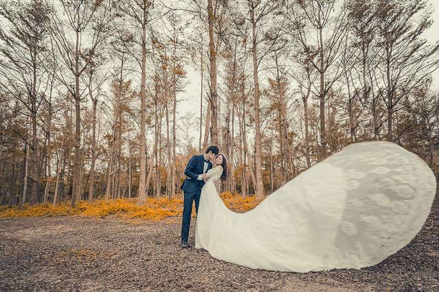 30787953431 afcee3ba36 z 台南婚紗景點推薦 森林系仙女的外拍景點