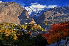 Karimabad, Hunza Valley (Shehzaad Maroof Khan) Tags: karimabad hunza gilgitbaltistan karakoram snow ultarsar autumn goldenhour trees baltit fort pakistan