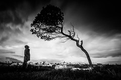 Listen to nature (Vitor Pina) Tags: monochrome blackandwhite people candid contrast conceptual algarve scenes shadows tree silhoete dark pretoebranco pessoas photography moments momentos man