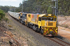 Cows (PJ Reading) Tags: aurizon qr qrnational queensland rail railway train cargo goods freight locomotive qld australia transport transportation diesel northcoast ncl cattle livestock cow empty 2170class flinders