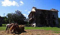 Arriondas, Asturias, Espaa (Caty V. mazarias antoranz) Tags: arriondas asturias principadodeasturias spain espaa concejodeparres oviedo rosella descensodelsella canoas alquilerdecanoas
