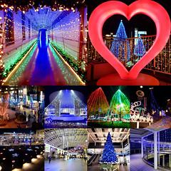20162017_Walkerplus (noishi_d) Tags:             2016             walkerplus travel trip tourism voyage viaggio viaje sightseeing saitama reise japan saibunya illumination christmaslights