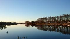 En stille morgen ved Engsøen (gsf fishing) Tags: pike gedde geddefiskeri pikefishing grndstedengsø